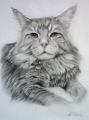 Портрет 18
